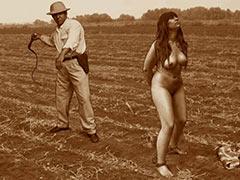 Slave on a plantation