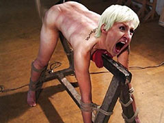 Torture on wooden horse