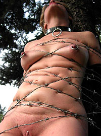 Collared slave girl tortured by the barbed wire