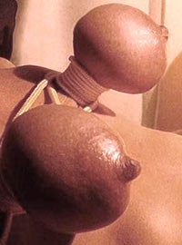 Sister loving pain shows her tits tied very hard