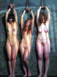 The girls from the harem are tired of waiting for their Owner who must come to punish them half to death