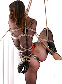 The bondage was incredible and the gag was terrifying and when her Master started sucking her nipples and then tugging on the crotch rope he...